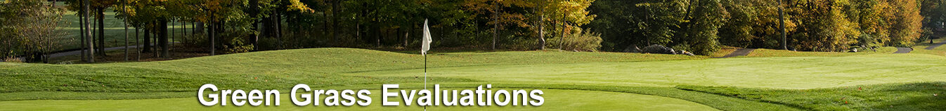Green Grass Evaluations